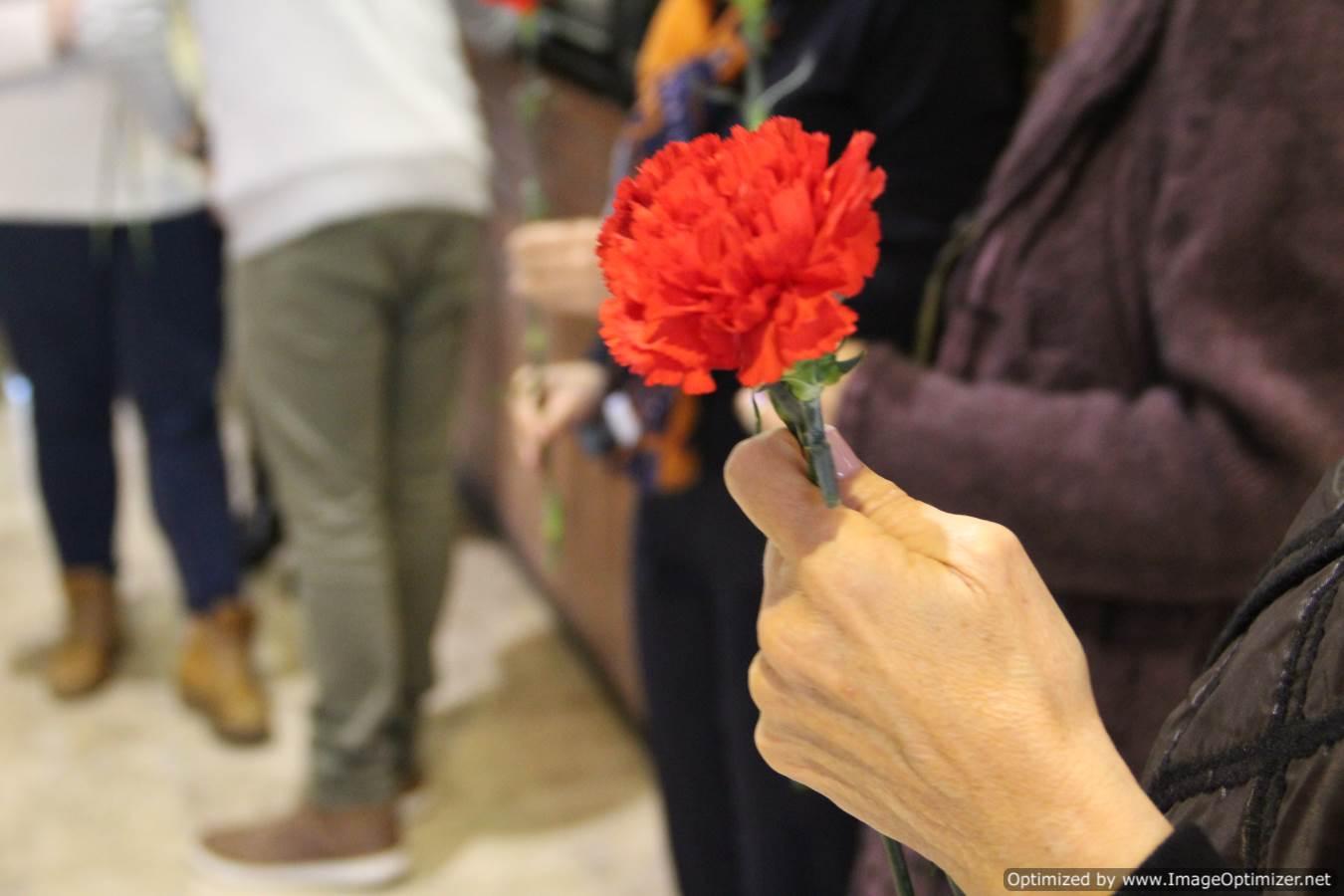 Dia Internacional de l'eliminació de la Violència contra la Dona - imatge 0