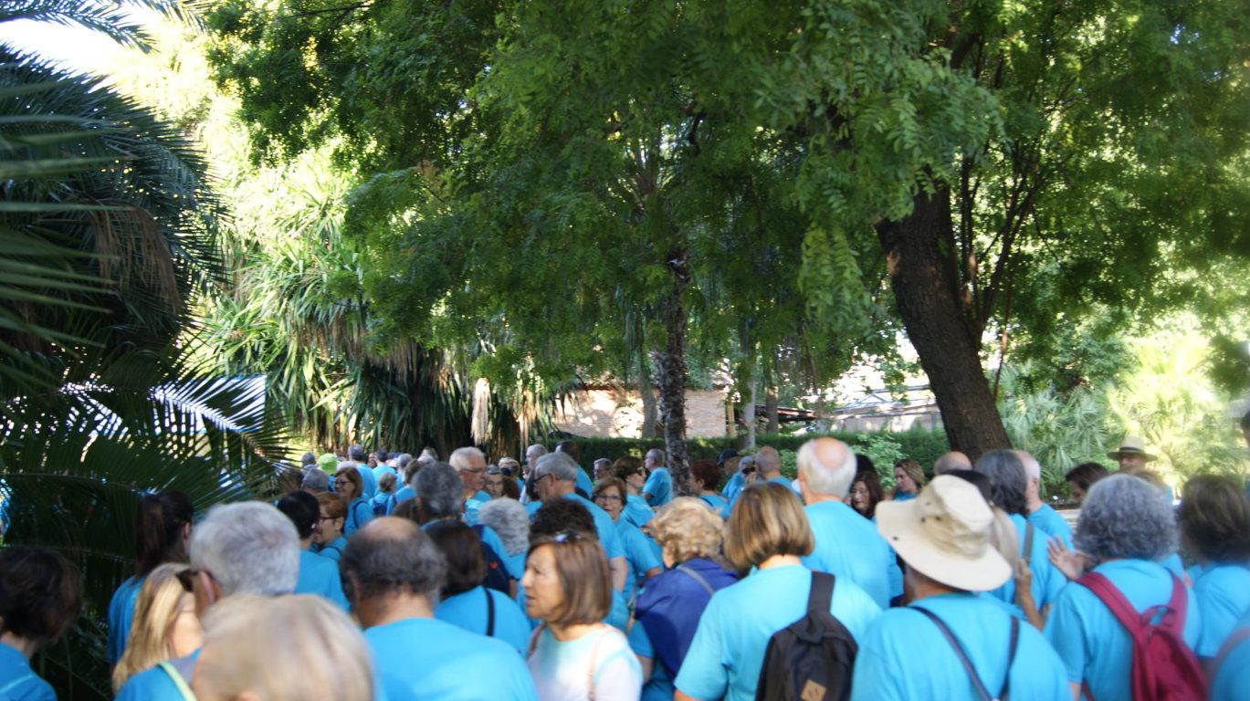 10é Passeig Saludable de La Nau Gran - imatge 0