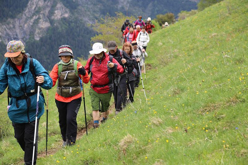 Geograns als Pirineus 2018 - imatge 0